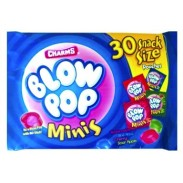 Charms Blo Pop Minis 8.5oz.